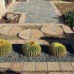 Landscape paving and cactus