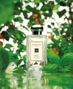 A wink of basil combined with oh-so floral neroli. Basil & Neroli Cologne is the finishing touch.