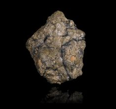 Incomparable, Recently Discovered Lunar Meteorite