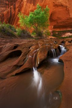 Coyote Gulch Waterfall in Utah All Nature, Amazing Nature, Beautiful Waterfalls, Beautiful Landscapes, Beautiful World, Beautiful Places, Seen, Belle Photo, The Great Outdoors