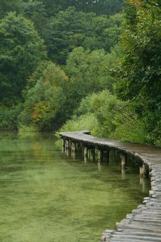 I love the green water reflecting the green forest. Beautiful World, Beautiful Places, Nature Aesthetic, Pathways, Beautiful Landscapes, Wonders Of The World, Places To Go, Nature Photography, Around The Worlds