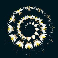 ABISMO Y REPETICIÓN. VIDA Y MUERTE Los hipnóticos gifs florales de Anna Taberko - La Criatura Creativa