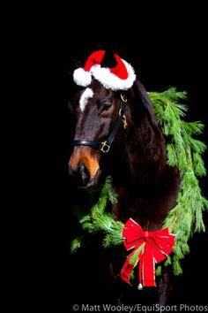 Christmas Santa horse