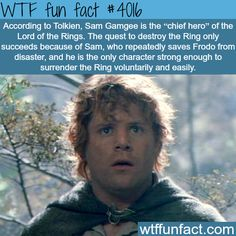 Samwise Gamgee is he chief hero of TLOTR. Did anyone really need Tolkien to confirm this? ๏̯͡๏﴿ Its a Fact Wtf Fun Facts, Random Facts, Random Things, Random Stuff, Strange Things, Nerdy Things, O Hobbit, Into The West, Dc Movies