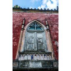 Check and follow my profile! Thanks!Finestre mai viste aperte... -- #window #windows #architecture #architettura #streetphotography #colour #ph #photo #photos #photograph #photographie #pic #pics #picture #pictures #foto #fotografia #napoli #naples #old #picoftheday #bestoftheday #instaoftheday #gramoftheday #photooftheday #instago #instagood #goodmorning #instagram #red