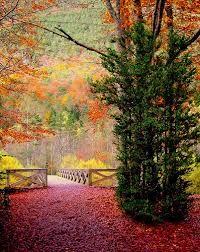 Resultado de imagen de ordesa otoño