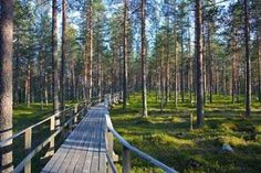 Start - Heart of Lapland Lappland, Archaeological Site, Homeland, Railroad Tracks, Sweden, Highlights, National Parks, Bucket, Photo Illustration