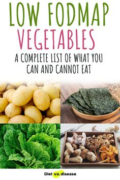Have you been searching for a list of safe vegetables you can have on the low FODMAP diet? Here's a list of low FODMAP vegetables to eat and high FODMAP vegetables to avoid. #dietitian #nutritionist #health FODMAPs Low Fodmap Vegetables, List Of Vegetables, Diet Meals, Diet Meal Plans, Nutrition Education, Nutrition Tips, Vegetarian Protein, Food Intolerance, Fodmap Recipes
