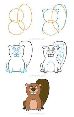 How to draw a beaver - Comment dessiner un castor