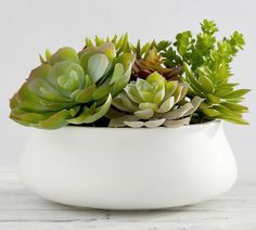 Shop Pottery Barn's collection of artificial plants and faux flower arrangements. Add the finishing touch with silk flowers that will be in bloom all year round. Spiky Succulent, Succulent Bowls, Succulent Centerpieces, Succulent Wall, Wedding Centerpieces, Wedding Decorations, Faux Succulents, Faux Plants, Succulents Garden