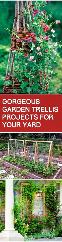 Gorgeous Garden Trellis Projects for Your Yard. Fun ideas, designs and tutorials..
