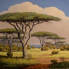 Framed size: The camel thorn tree is a conspicuous shade tree of great importance wherever it grows . It is sometimes called the umbrella thorn tree. Landscape Drawings, Landscape Art, Art Drawings, Landscapes, African Tree, African Plants, South African Flowers, South African Artists, Shade Trees