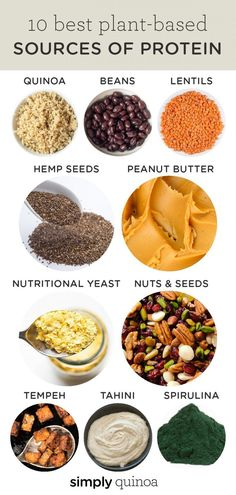 We're sharing our list of the 10 best sources of plant-based protein for vegans and vegetarians. This list also includes recipe inspiration for using each ingredient! Source by minnetheisen plant based Healthy Recipes, Clean Recipes, Gourmet Recipes, Whole Food Recipes, Dog Food Recipes, Healthy Snacks, Protein Recipes, Healthy Cooking, Easy Recipes