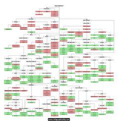 Language Families www.infographicality.com.jpg (1280×1320)