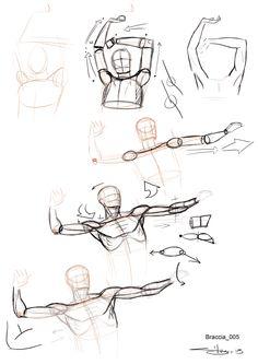 articolazione braccia_05
