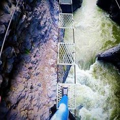 When nobody tells you about the long and wobbly bridge that connects the two ziplines and you're stuck up the top of a gorge with no other option... #baños #adrenaline #adrenalinejunkie #ecuador #travel #traveller #travels #traveling #travelgram #travelling #mytravelgram #travelingram #igtravel #traveler #solotravel #landscapes #tourist #wanderer #aroundtheworld #globetrotter #wander #explore #adventure #traveler_story #scary #heights #views