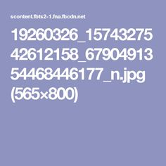 19260326_1574327542612158_6790491354468446177_n.jpg (565×800)