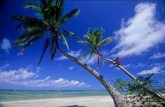 Praia de assimirim, Ilha de Boipeba, Bahia, Brazil