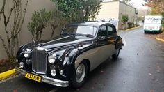 Jaguar type IV
