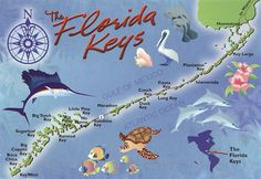 Learn more about the communities in the Islands of the Florida Keys include Key Largo, Islamorada, Marathon, Big Pine Key and Key West from Conchland. Florida Keys Map, Florida Travel, Fl Keys, Palm Beach, South Beach, Florida Girl, Old Florida, Miami Florida, Bahamas Vacation