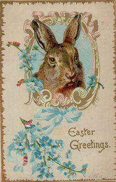 Vintage Easter Bunny c1900 Greetings Postcard Card Victorian #Easter