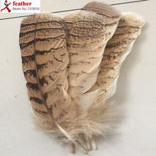Wholesale perfect 10pcs high quality natural Owl tail feathers 7-10inch/17-25cm Decorative diy(China (Mainland))