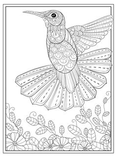 hummingbird free colouring in page Spring Coloring Pages, Flag Coloring Pages, Free Adult Coloring Pages, Colouring Pics, Flower Coloring Pages, Animal Coloring Pages, Coloring Books, Free Coloring, Coloring Pictures Of Animals