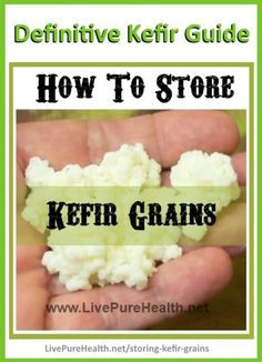 How To Store Kefir Grains. The easy method to store your Kefir Grains. Step by Step instructions with photos, here is how I do it. This is how I kept my Kefir alive for YEARS!