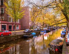 """Check out new work on my @Behance portfolio: """"I AMsterdam"""" http://be.net/gallery/45925261/I-AMsterdam"""