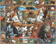 NEW White Mountain Puzzles World of Cats - 1000 Piece Jigsaw Puzzle