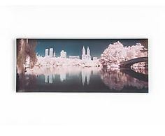 Stampa su canvas Central Park - 40x100 cm