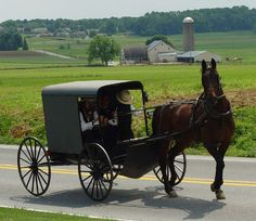 meet an Amish family and ride in an Amish Horse and Buggy