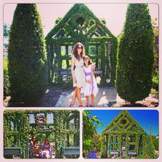 My little sis and I went out on a ledge and explored cottages made out of hedge!