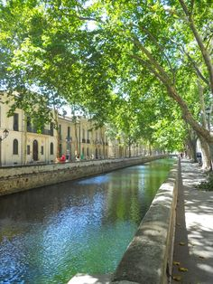 Nimes, France ...after Paris, this is my most favorite town in France. So quaint and beautiful!