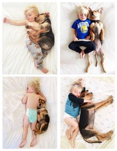 Unconditional Love! Rescue puppy Theo takes his daily naps alongside big brother Beau! So Sweet!