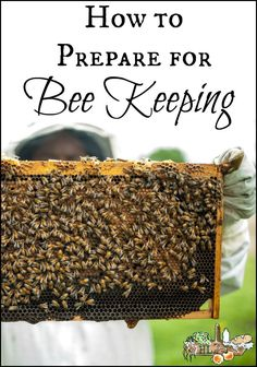 How to Prepare for Bee Keeping How to Prepare for Bee Keeping l Get started with backyard bees for t Honey Bee Hives, Honey Bees, Beekeeping For Beginners, How To Start Beekeeping, Raising Bees, Backyard Beekeeping, Birds And The Bees, Bee Friendly, Hobby Farms