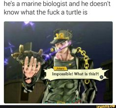 Part 3 Jotaro wasn't a marine biologist yet cause he was 17 but still how the fuck does he not know what a turtle is