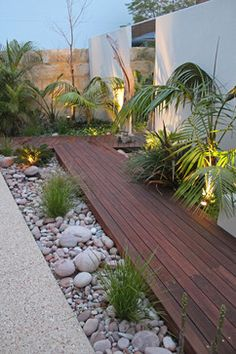 Ascher Smith Landscape Designs tropical-landscape