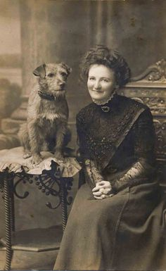 Curious Sofa began in 2000 as a boutique in Kansas City offering new and vintage items. Antique Photos, Vintage Pictures, Vintage Photographs, Old Pictures, Art Zen, Photos With Dog, Vintage Dog, Border Terrier, Old Dogs