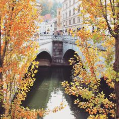 Tripie bridge is a landmark of Ljubljana. It connects the old medieval town with the new part of the city.
