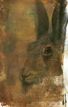 What a beautiful Hare.