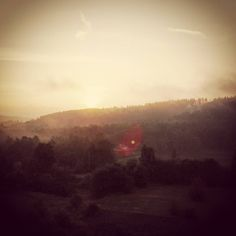 Good morning again  #morning #morningcigarette #balcony  #sunrise #newday #nature #natureart #bohemia #czech #mist #morningmist #tree #forest #ifthesetreescouldtalk by czedy
