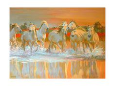 Horses, Posters and Prints at Art.com