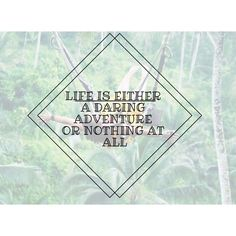 Free Advice, All Or Nothing, Dares, Travel Quotes, Journey, Inspirational Quotes, Inspire, Adventure, This Or That Questions