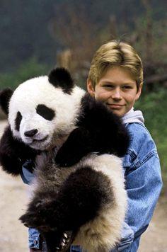 little  Panda   little-panda-2395364.jpg