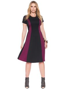 Colorblock Fit and Flare Dress   Women's Plus Size Dresses   ELOQUII