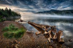 Misty morning by Bob Bittner on 500px
