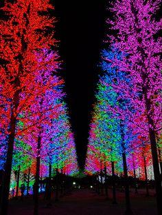 City of Digital Lights - Shah Alam, Malaysia