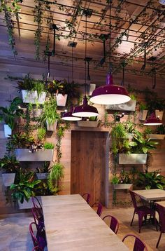 Gorgeous Restaurant's Green and Natural Interior Design. Natural interior design applied in this one of the walls of this restaurant is decorated with unique and eye-catching lined plant pots. Coffee Shop Interior Design, Coffee Shop Design, Bar Interior, Restaurant Interior Design, Modern Interior Design, Interior And Exterior, Coffee Shop Interiors, Outdoor Restaurant Design, Resturant Interior