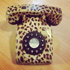 Leopard Phone